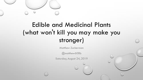 Edible and Medicinal Plants - Matthew Zuckerman