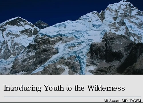 Wilderness and Youth - Ali Arastu