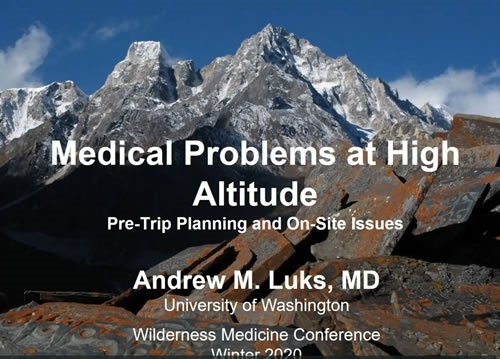 Medical Problems at High Altitude: Pre-trip Planning and On-site Issues - Andrew Luks