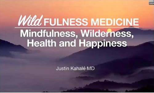 Wildfulness Medicine: Mindfulness, Wilderness, Health and Happiness - Justin Kahale