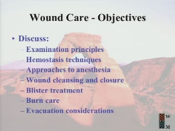 Wound and Burn Management - Auerbach
