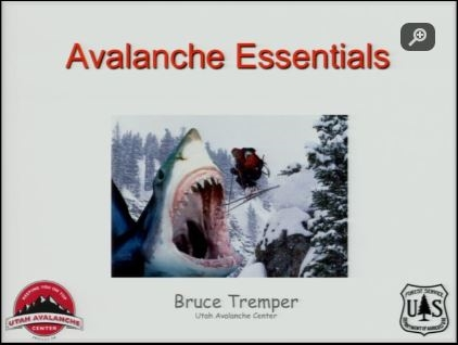 Avalanche - Bruce Tremper