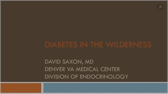 Diabetes in the Wilderness - David Saxon